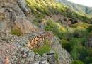 La Via dell'Argento – Parco Geominerario